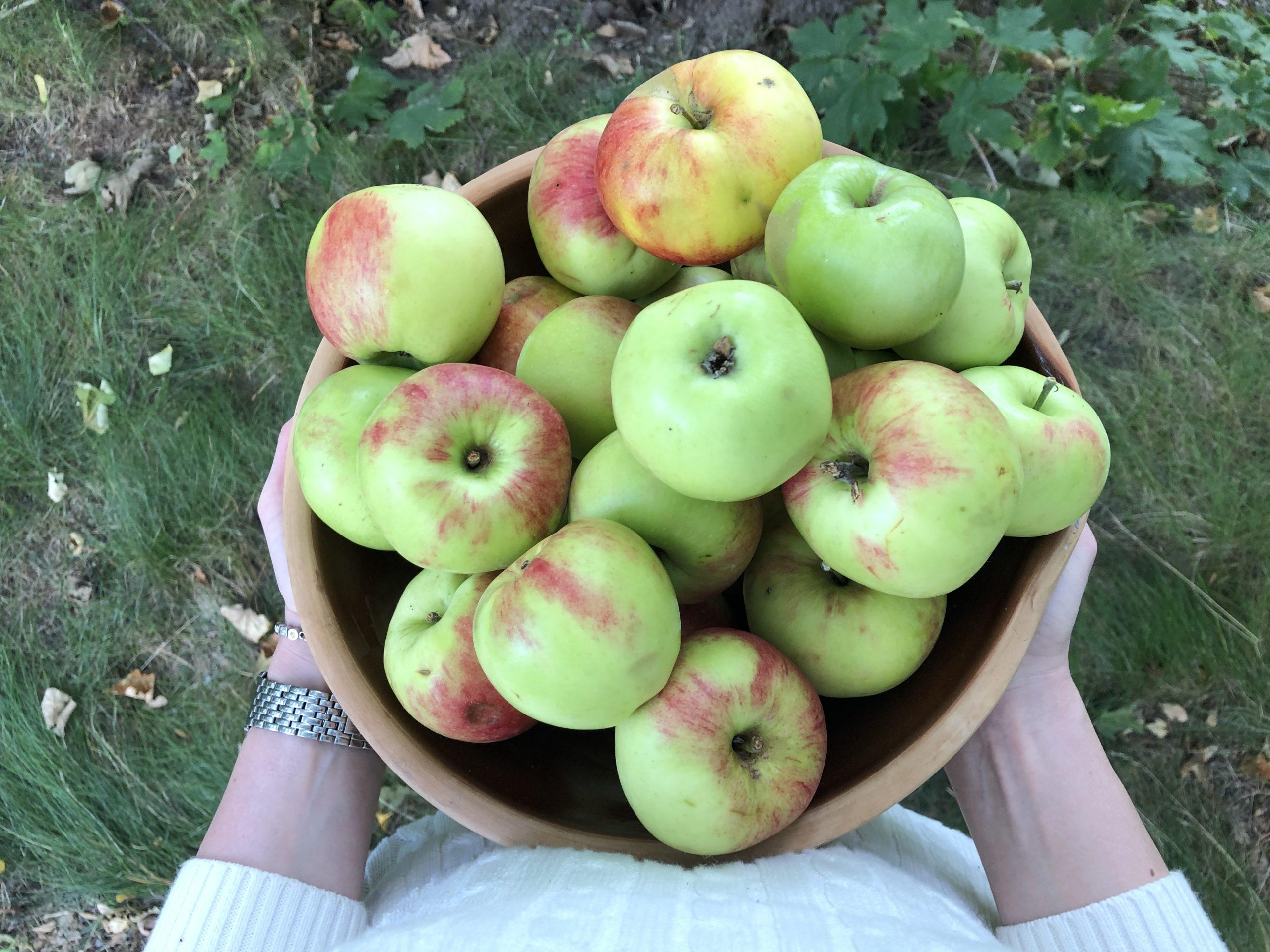 Äppelmos i ugn